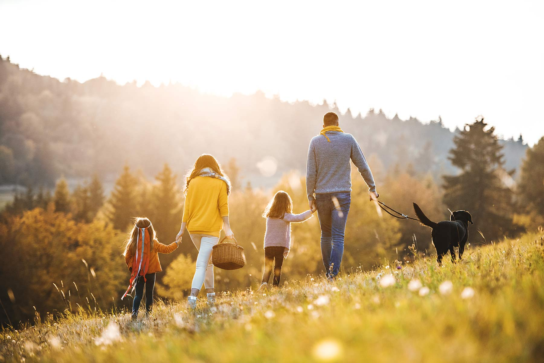 best family holiday in wales | Rent a lodge UK | Rural retreats UK | Holiday homes Wales